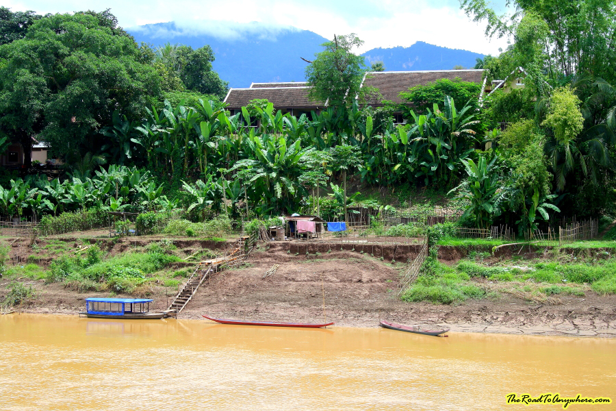 A farm on the banks of the Nam Khan River in Luang Prabang, Laos