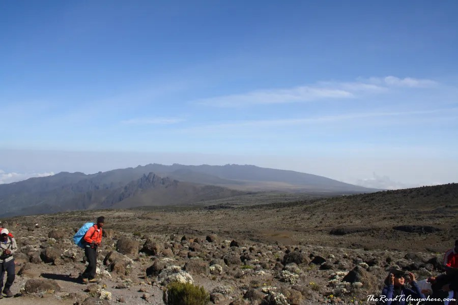 A porter trekking across the Shira Plateau on Mount Kilimanjaro, Tanzania