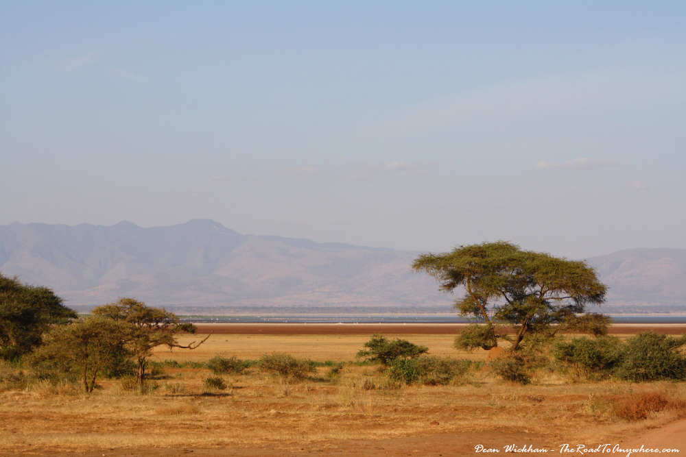 Grasslands in in Lake Manyara National Park, Tanzania