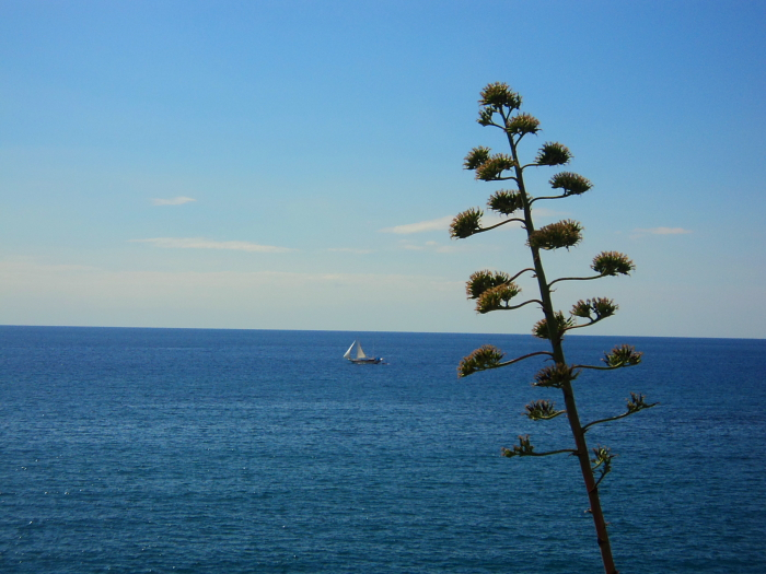 A yacht on Via Dell'Amore in Cinque Terre, Italy
