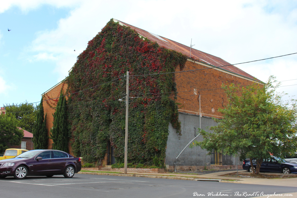 A vine covered building in Glen Innes, Australia