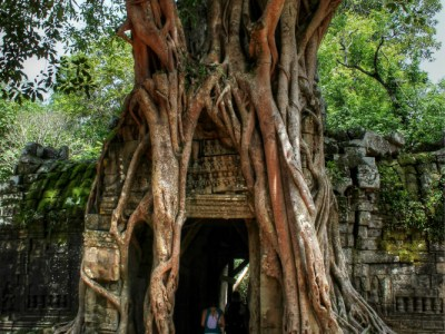 Tree covered ruins at Ta Som in Angkor, Cambodia