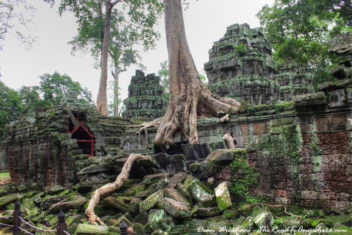 Ruins at Ta Phrom in Angkor, Cambodia
