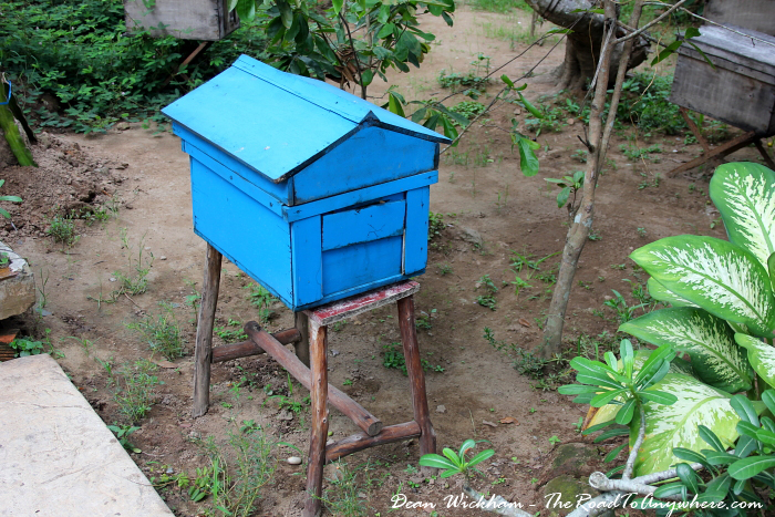 Bee Hive at a honey farm in the Mekong Delta, Vietnam