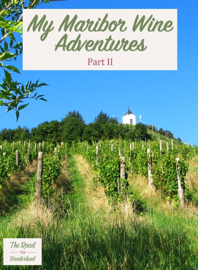 Slovenian Wine & My Maribor Wine Adventures II Pin