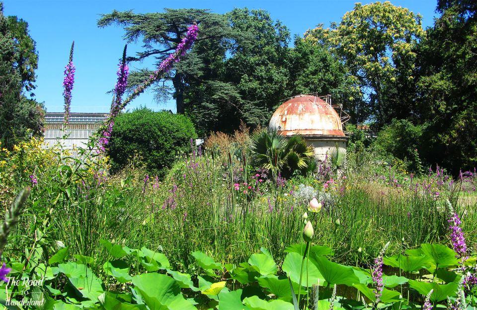 English Garden, Jardin des Plantes