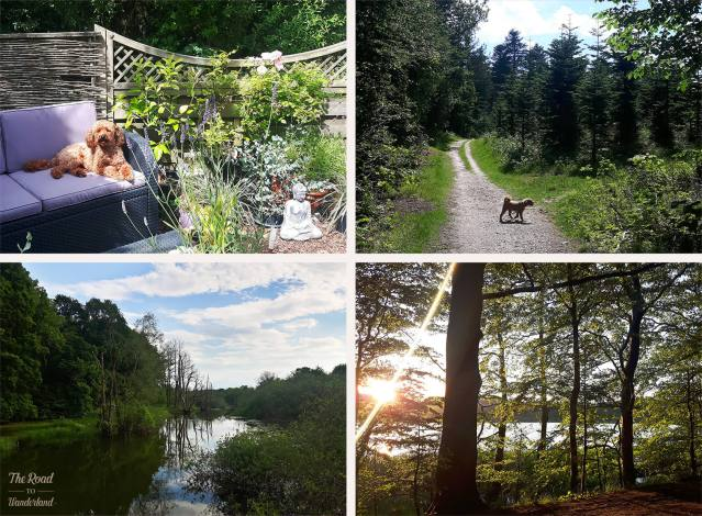 2018 Travel Review: Silkeborg, Denmark – Bijoux in the garden and in the woods and images from Silkeborg