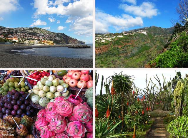 2018 Travel Review: Madeira, Portugal – Funchal town beach, Monte, Botanic Gardens, and produce at the Farmers' Market