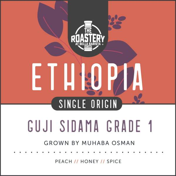 Ethiopia Guji Grade 1 - Single Origin Coffee Subscription