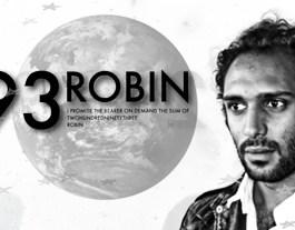 293 ROBIN