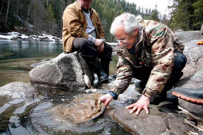 Panning for gold in the Fraser River near Valemount