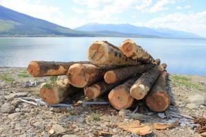Kinbasket, Robson Valley, dead wood, drift wood, debris management, BC hydro, Spaz Logging, valemount marina