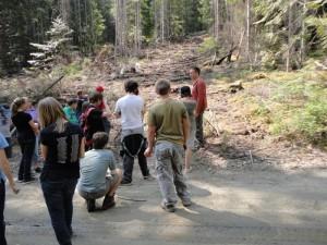 Valemount Community Forest, Shane Bressette, Robson Valley, BC forestry