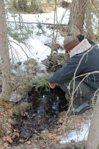 cranberry marsh geothermal fault owen torgerson