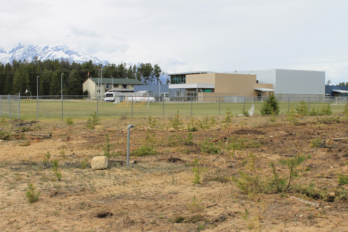 School garden seeks local involvement