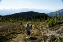 McKirdy trail hut cabin (4)