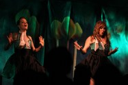 Robson Valley music festival 2014 (bottoms up burlesques) (1)