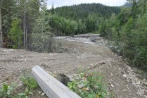 Yellowjacket Creek Kinbasket Valemount (1)