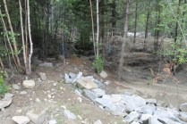 Yellowjacket Creek Kinbasket Valemount (2)