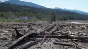 Dangerous Driftwood Valemount Kinbasket