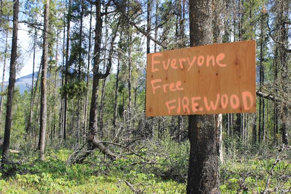 free firewood valemount sign (1)
