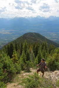 view from mt terry fox valemount 2015