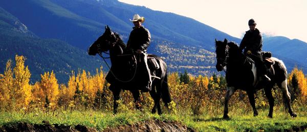 back country horse men mcbride monica (1)