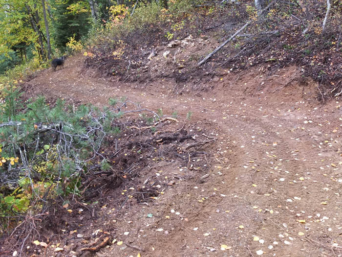 $140 large for McBride's growing trail network