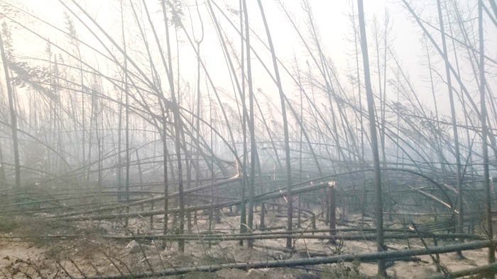 Robson Valley firefighters battle fires near Quesnel