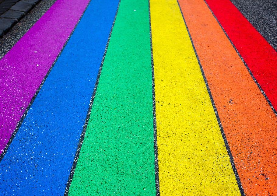 pride-pride-day-rainbow-color-flag-lgbt