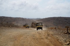 De Palm Offroading in Aruba