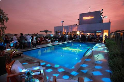 Image result for Hollywood Rooftop Party