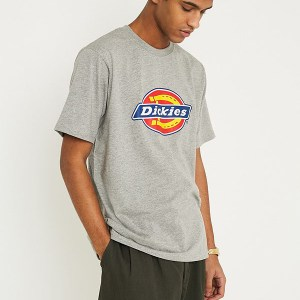 Camiseta Dickies Horseshoe Grey Melange
