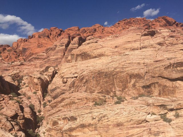 Rock climbing in Red Rock Canyon