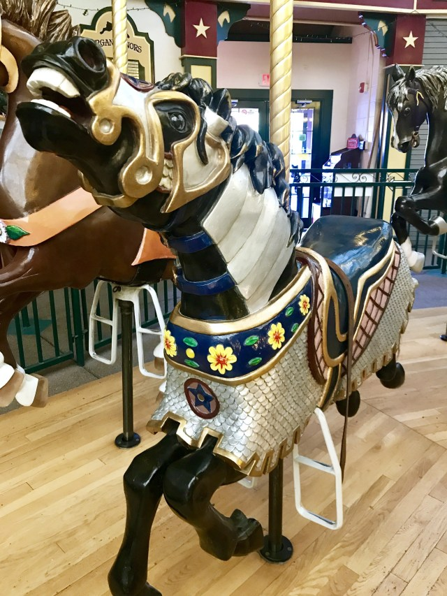 Sir Franklin at A Carousel for Missoula