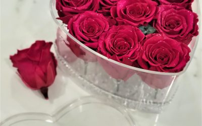 How to Care for Preserved Roses
