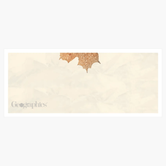 "Crushed Leaves Envelopes No.10 (4.12""x9.5"") Print on Demand"