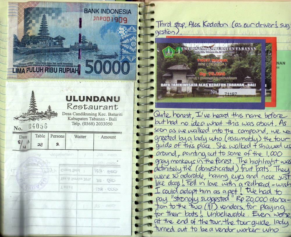 travel journal ideas: with money