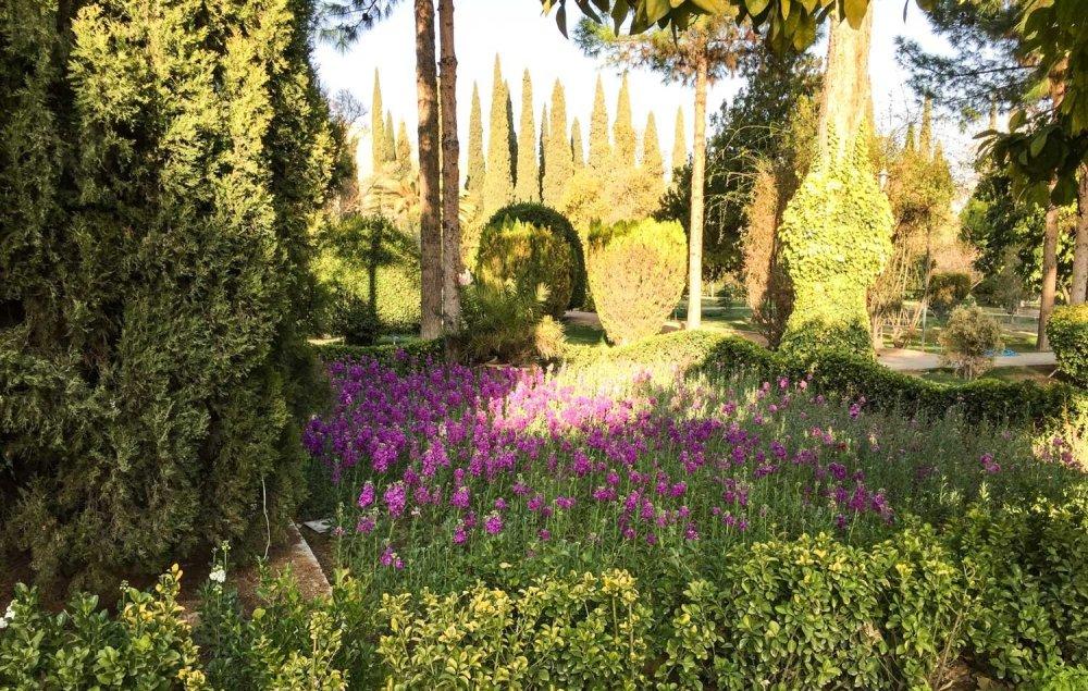 Things to see in Shiraz - Shiraz Botanical Garden