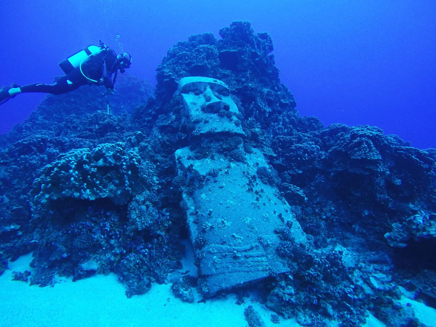 the famous underwater moai you'll see if you go scuba diving on easter island