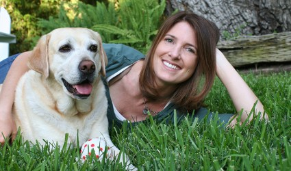 pet safety expert, dog safety expert, pet lifestyle expert, pet travel expert, los angeles california