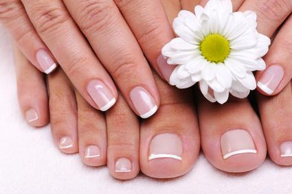 The Scoop Bio Sculpture Gel Manicure And Pedicure