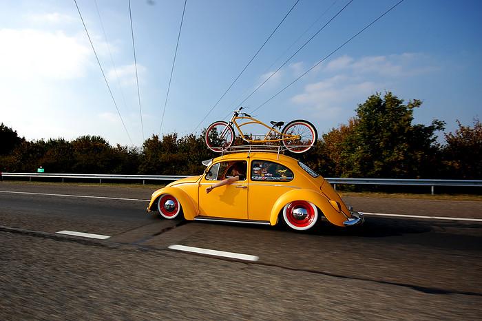 beetle bike rack
