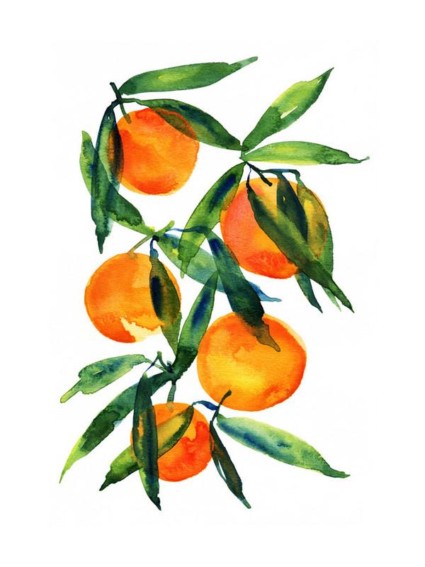 Tangerine by Alexandria Dzh