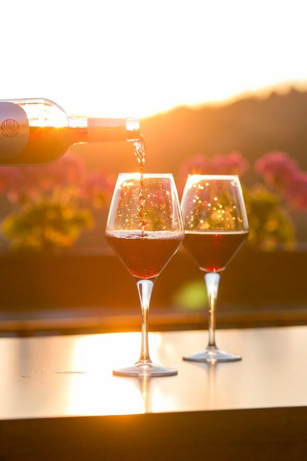 go on a wine tour