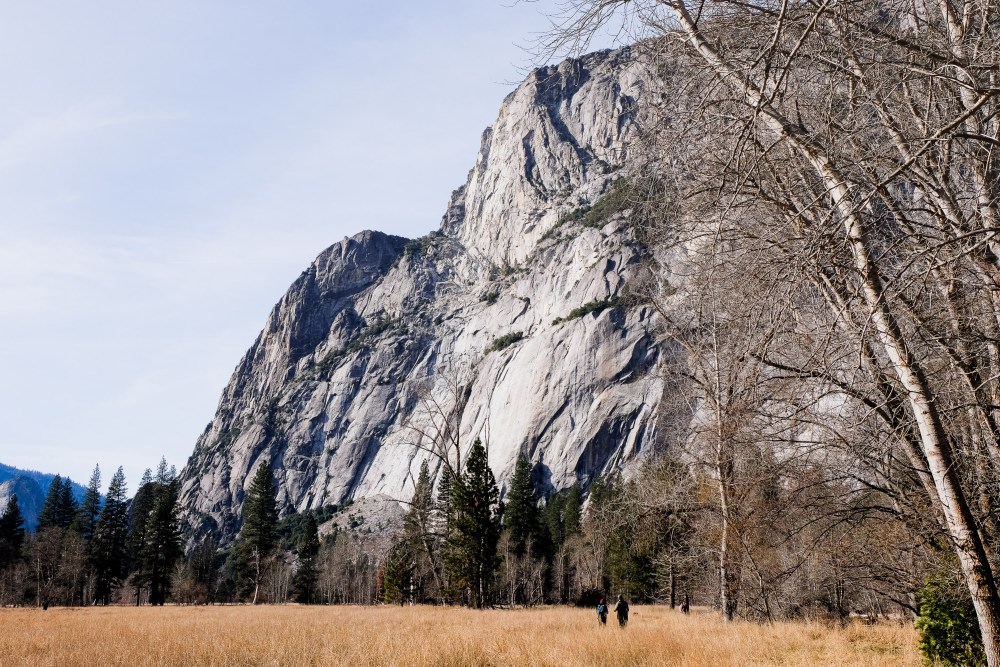 Meadow // Things To Do in Yosemite in Winter