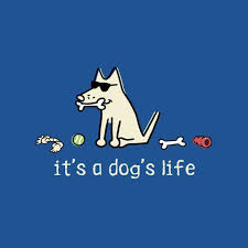 A Dog's Life: A new social group on TuDiabetes!