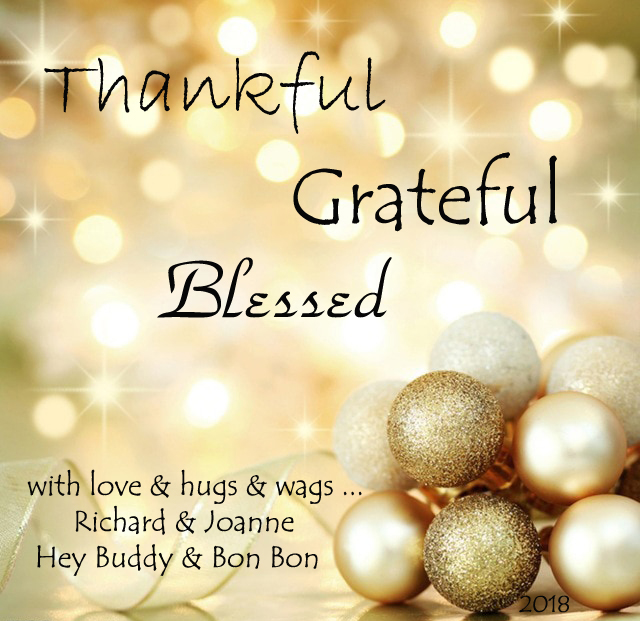 Wishing You Blessings and Joy, O Savvy Ones!