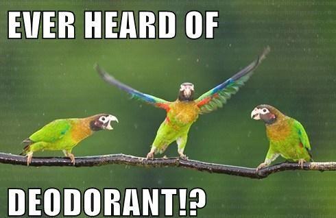 Savvy Food/Living, 4/24/19: Lemon and Natural Deodorants