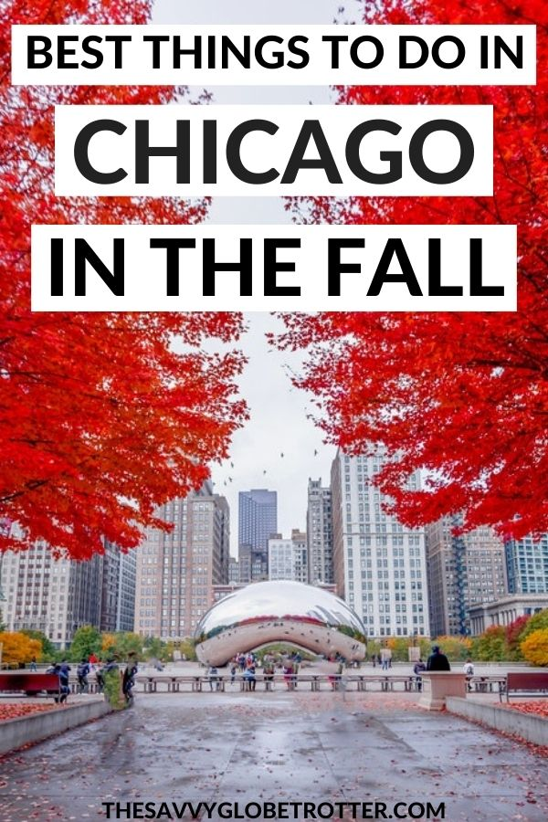 Best Things to Do in Chicago in the Fall
